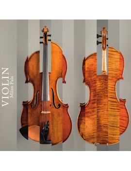 Violin - Milan Pala download